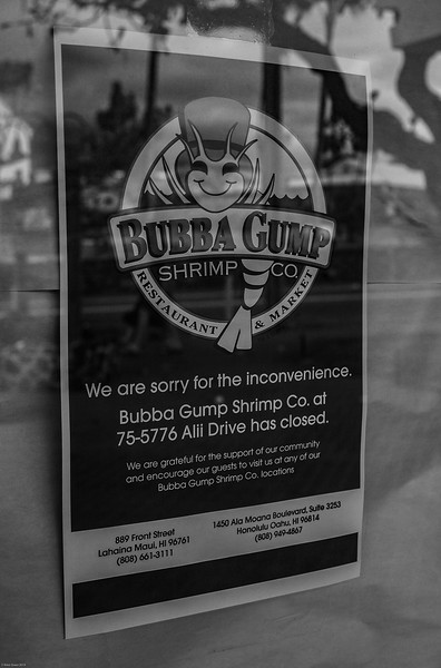 NEWSWORTHY.  Bubba Gump shrimp closed after loss of business. Lacking in quality food and service, the establishment didn't live up to Downtown Kona's growing restaurant scene. A picture perfect building is now for lease on the edge of Alii Drive.