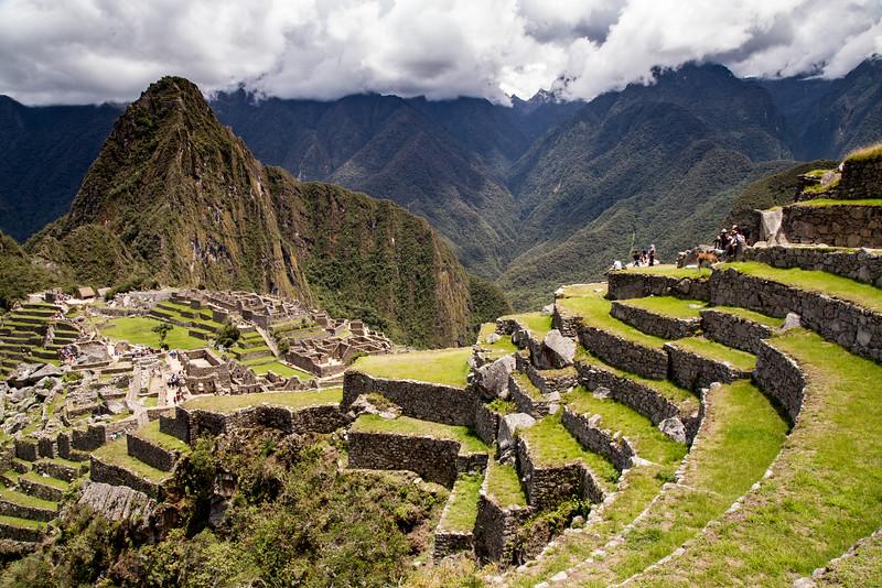 Machu Picchu in Peru-8193.jpg