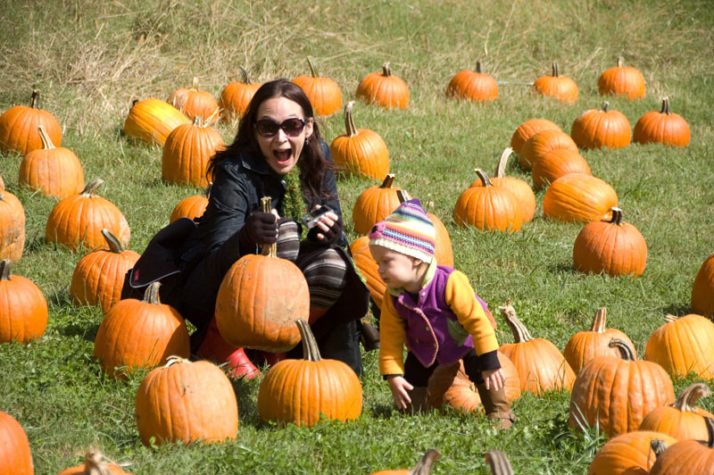 """We were instructed to """"Not pick up the pumpkins by their stems.""""  Look at the first person to disobey."""