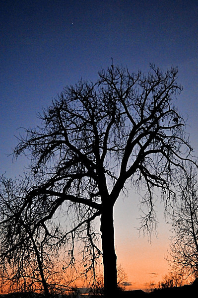 Venus Sunset on the South Platte