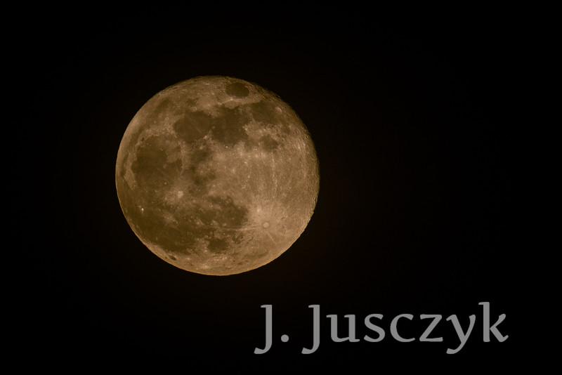 Jusczyk2021-7996.jpg