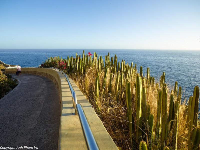 Gran Canaria Aug 2014 024.jpg