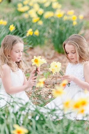 20180501 Daffodils