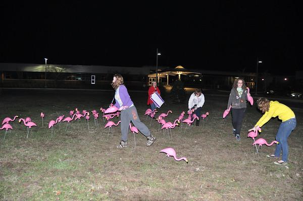 SMMHS Drama Club Flamingo Flocking 2009