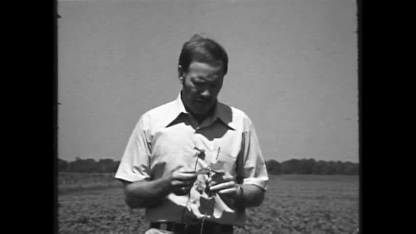 The Beneficials: Insects to Control Insects (1978)