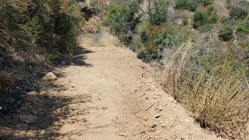 20190810067-Los Pinetos trailwork.jpg