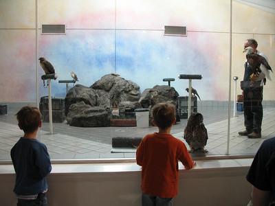 Lindsey Museum