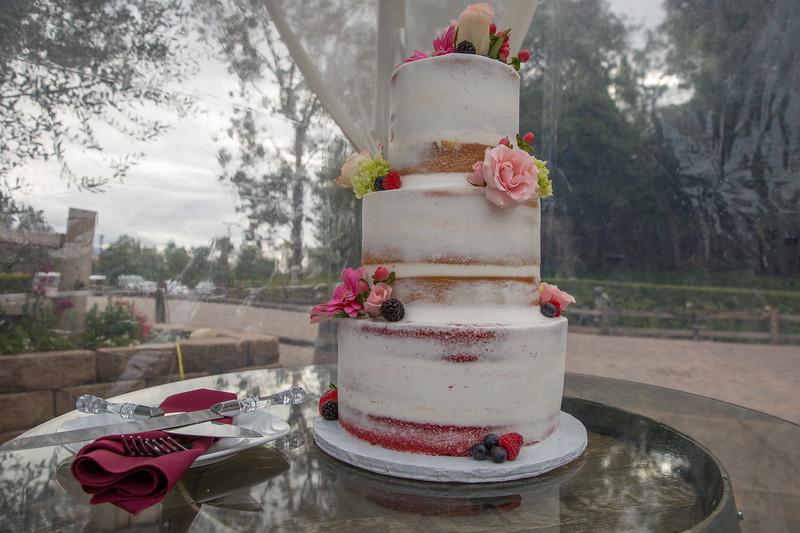 wedding 2.14.19-76.JPG