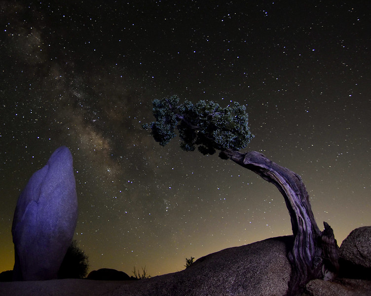 Penguin Rock & Juniper, Frame The Milky Way