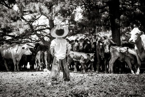 Ecleto Land & Cattle