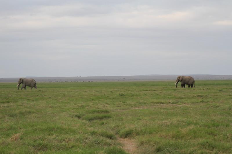 Kenya 2019 #2 1555.JPG