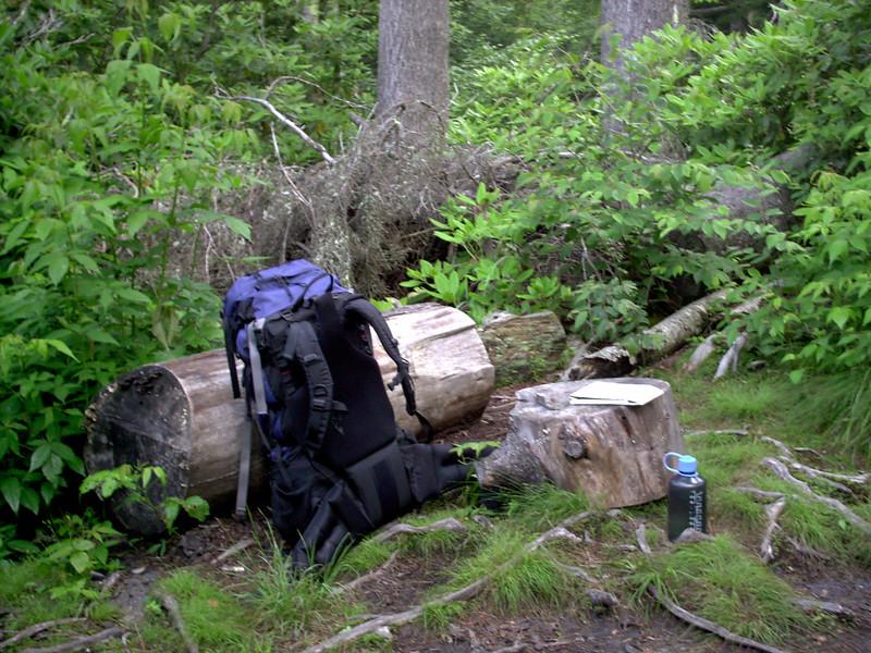 Alum Cave Trail - 5850'
