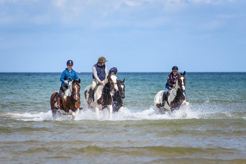 Holkham Beach Ride August 2019 (50).jpg