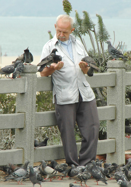 Old man feeding birds (2)