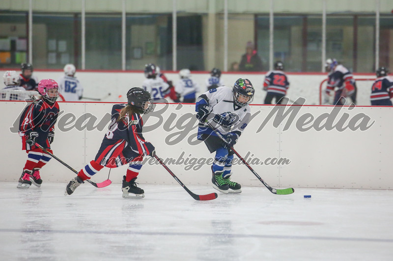 Blizzard Hockey 111719 7092.jpg