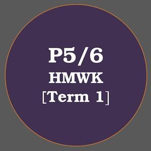 P5/6 HMWK T1