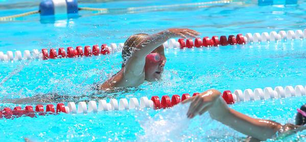 Torrington Swim - Bridgeport Only
