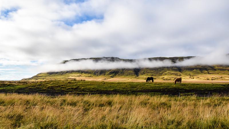 Iceland_2015_10_09_12_45_20.jpg