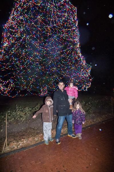 Toledo Zoo Light Show - 2014 - _CAI4527.jpg