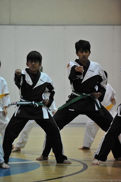 2015-12-18_HAC_KarateBeltPromotion@HockessinDE_20.jpg