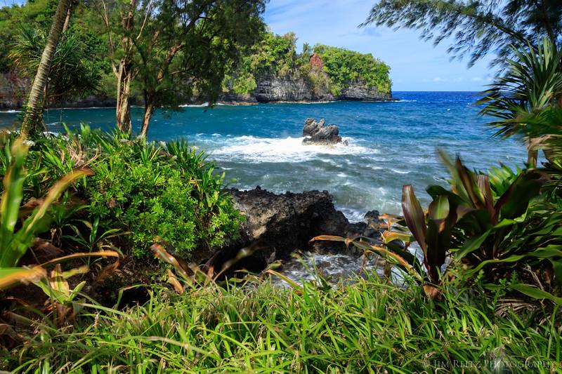 Hawaii Tropical Botanical Garden - near Hilo