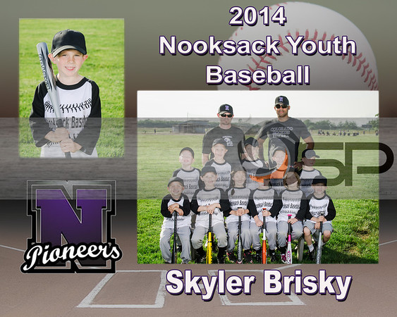 T-Ball - Brown / Bunker
