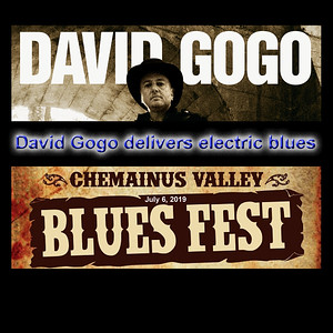 David Gogo Live at the Chemainus Blues Fest