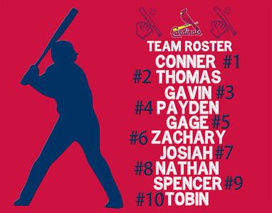 Cardinals - 2014