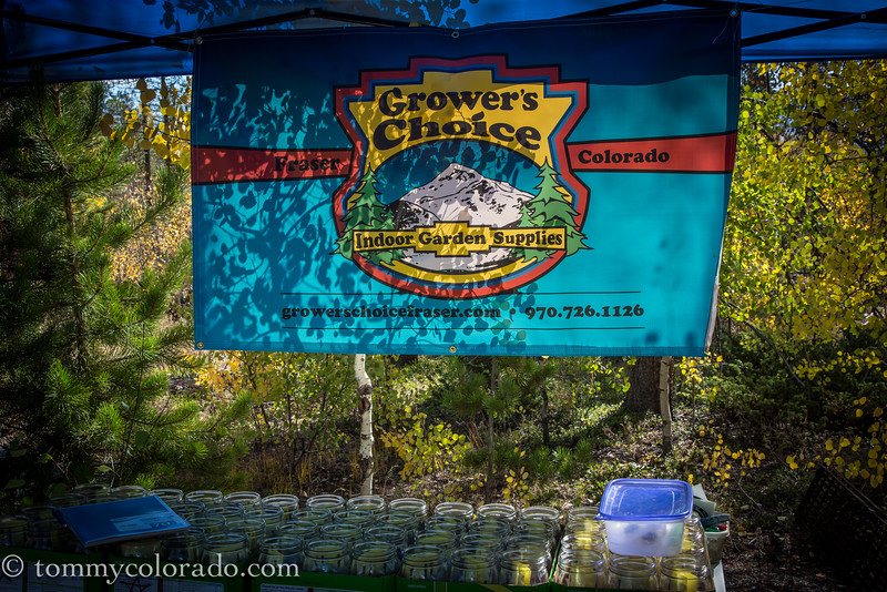cannabiscup_tomfricke_160917-2178.jpg