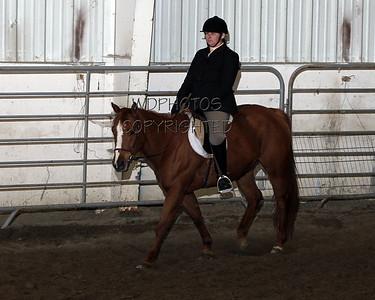 3 Horse Show Series 4/30/2011