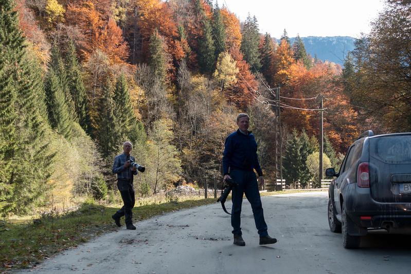carpathian mountains, bunea lodge