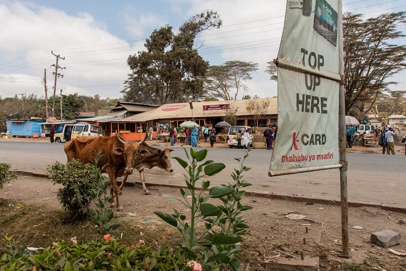 2013-Kenya2013-0718-0136.jpg