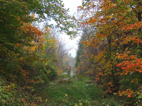 Cuyahoga National Park