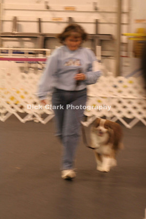 Queen City Dog Training Club, AKC Trials, Dec. 2007