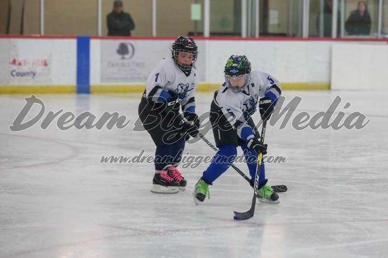 Blizzard Hockey 111719 7037.jpg