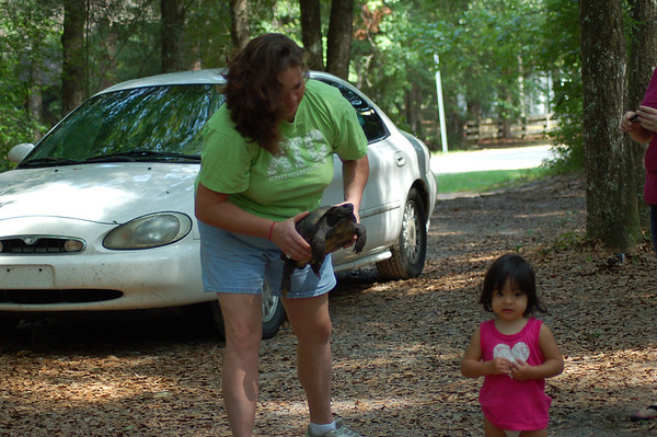 Violet makes friends with a large gopher turtle