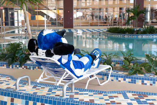 Sycamore Sam at Pool
