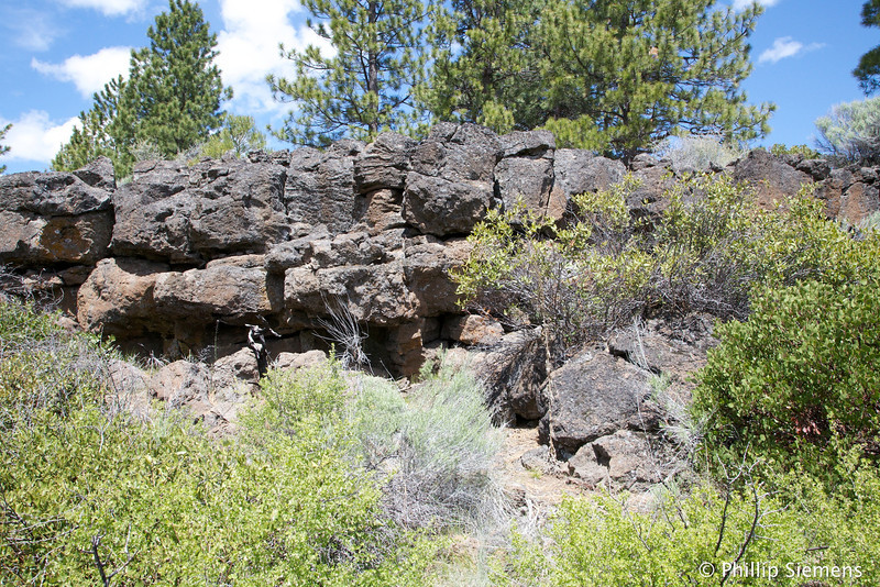 Rocky cliff, geocache DNF
