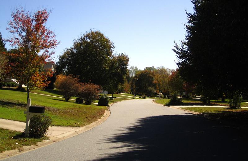 Bentley Farms Cumming GA Neighborhood (8).JPG