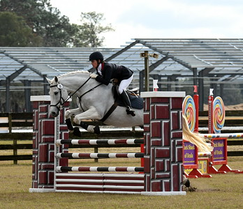 Ocala Winter I Horse Trials, January 2017