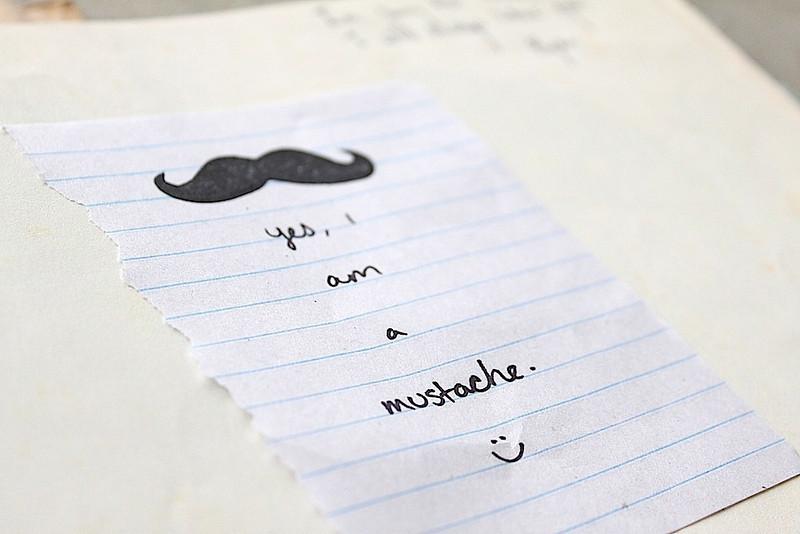 Mustache 1.JPG