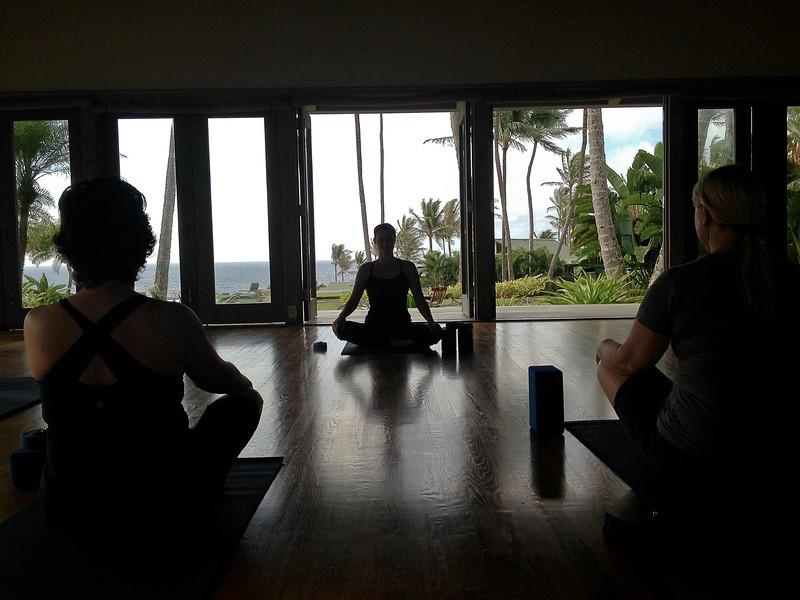 hana yoga.jpg