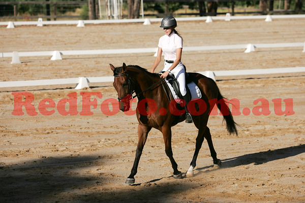 2017 03 11 Zamia Summer Series Dressage 2 Arena 1 a