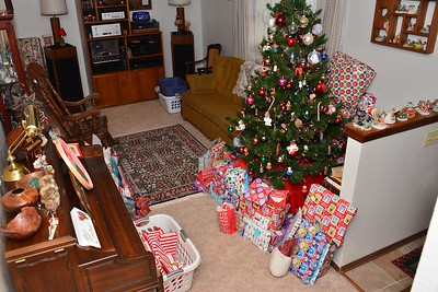 CHRISTMAS AT THE CASES  - 2018