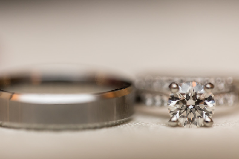 Houston Wedding Photography ~ Norma and Abe-1417.jpg