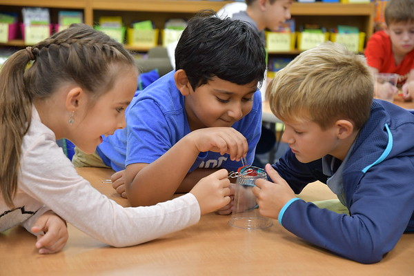 Third Graders Use STEM Skills to Save Fred the Gummy Worm