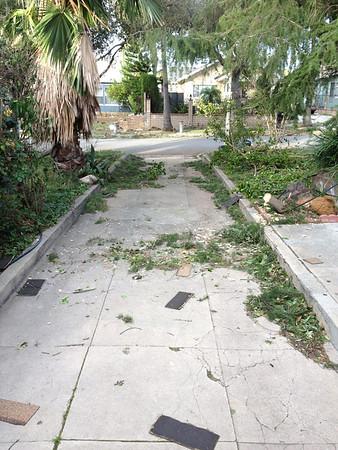 LA Winds 2011