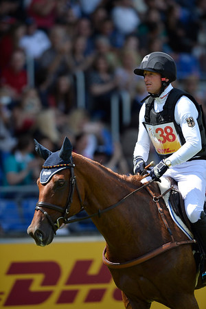 EVENTING - CROSS / CONCOURS COMPLET