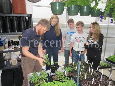 04-28-16 NEWS Tinora Greenhouse