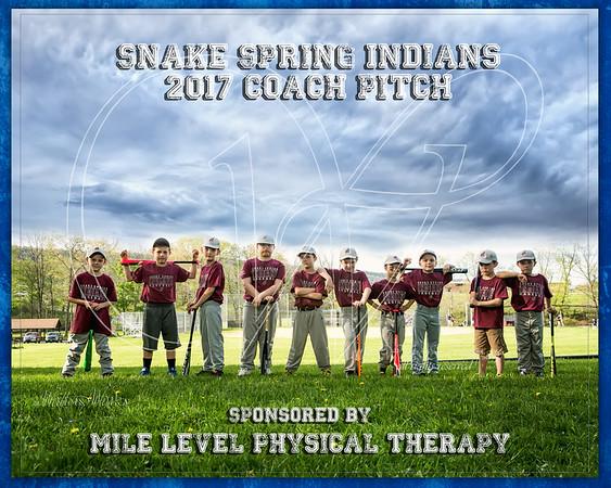 Snake Spring Indians 2017 Coach Pitch  Wagoner